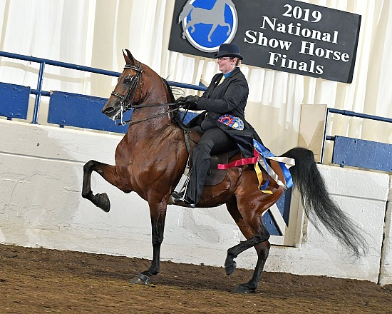 National Show Horse Finals
